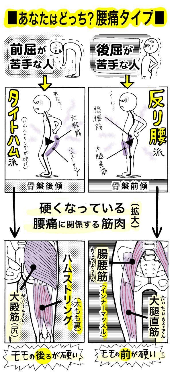 腰痛の新原因といわれる「タイトハム」をご存知でしょうか。タイト(硬く)になったハムストリング(太もも裏の筋肉)という言葉の略で、「たけしのみんなの家庭の医学」(テレビ朝日系)でも紹介されて話題にな...