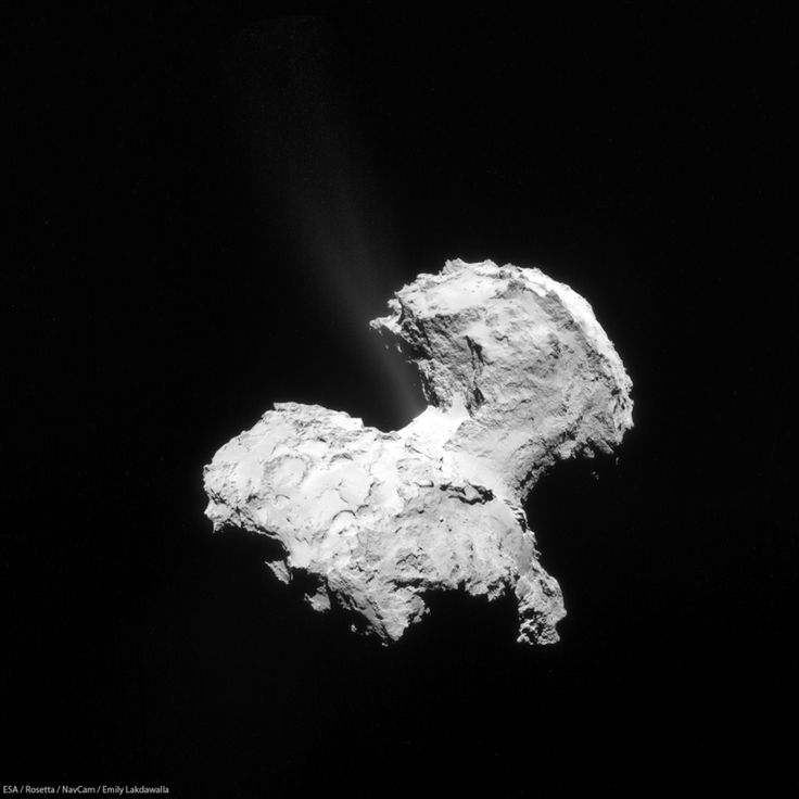 The Rosetta spacecraft has discovered all the elements of life in the gases jetting from a comet as it approaches the Sun.