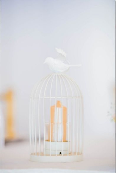 Monte Vista Venue small white birdcage with a gold candle inside it for a pink and gold wedding