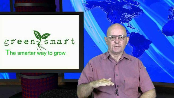 Why I am endorsing GREENSMART pots are a smarter way to garden