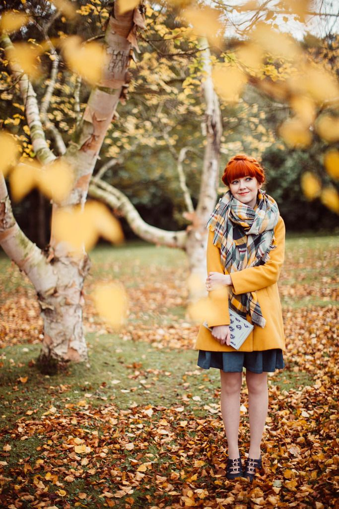 Blue & Gold By The Birch Trees - A Clothes Horse