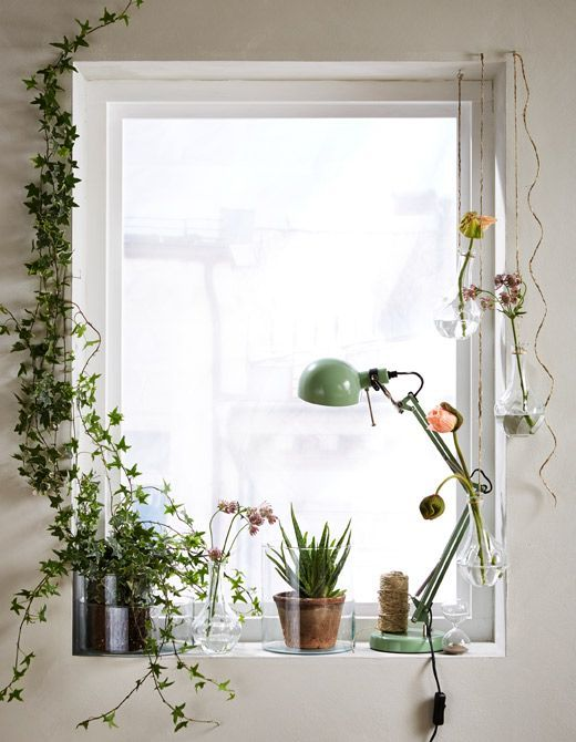 Let different varieties of fresh cut flowers and green plants replace the curtains. IKEA has the vases you are looking for, like VILJESTARK. Here a window is given a green setting with flowers and plants.