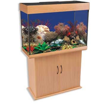 29 gallon aquarium stand diy woodworking projects plans for 55 gallon fish tank petco