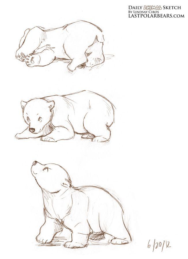 Daily_Animal_Sketch_099