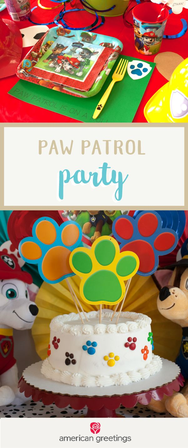Make your little one's birthday dreams come true with help from this Paw Patrol Party! Grab these colorful decorations, party essentials, and supplies from Target to make this celebration a memorable one. Don't you just love the idea of all their favorite characters coming to celebrate with them?!