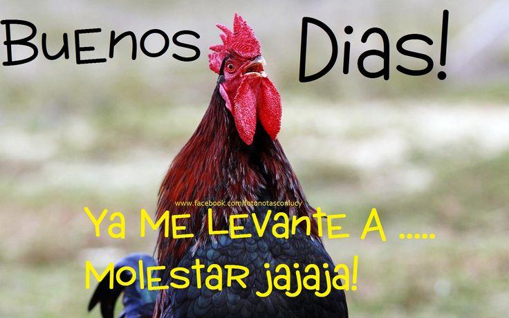 En mi camita solita mi marido no estahola amigo disculpavivo en venezuela estoy sin dinero para mis hijosayudame solo ingresando y dandole skip ad en este enlace httpmetbzabigailayudameporfavor - 2 4