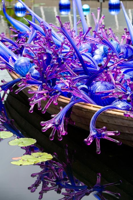 Dale Chihuly,  Blue and Purple Boat.  New York Botanical Garden, The Bronx, New York.