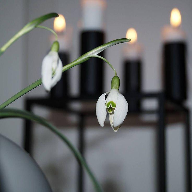 Kubus 4 candleholder. Photo credit: @maleneholm_