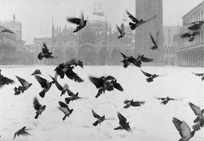 Venice. San Marco, 1960 c. Gianni Berengo Gardin