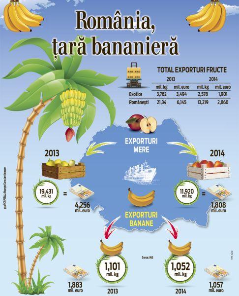 Infography-Banania