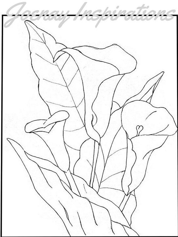 db703 coloring pages - photo#10