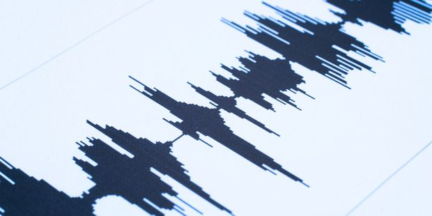 GeoNet said the light quake struck 20km southeast of Murupara. Photo / iStock