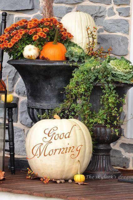 Autumn Mornings
