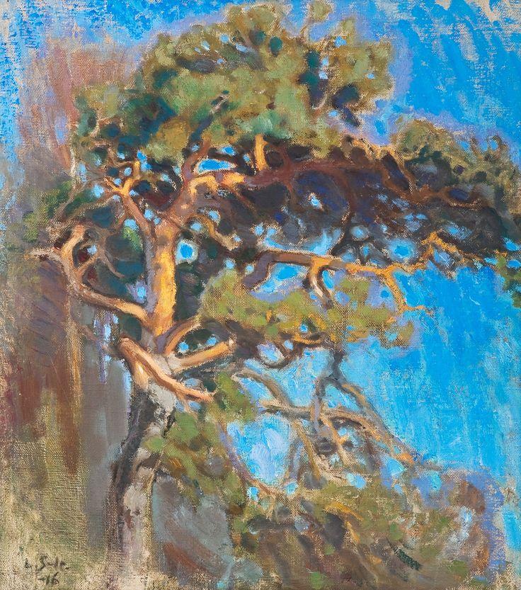 Noble pine / YLVÄS MÄNTY 1916, Lennart Rafael Segerstråle (1892-1975)