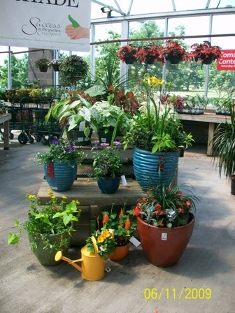 Color Creation container gardens from Calloway's Nursery in Dallas/Fort Worth, Texas.Container Garden