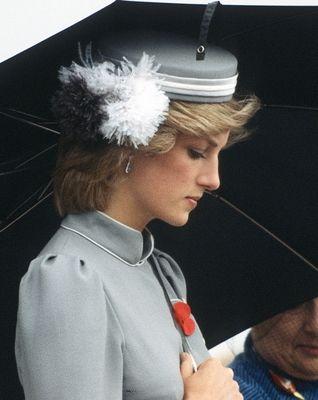 Princess Diana Legacy