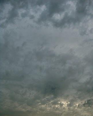 the sky is big in pasadena: August 2010