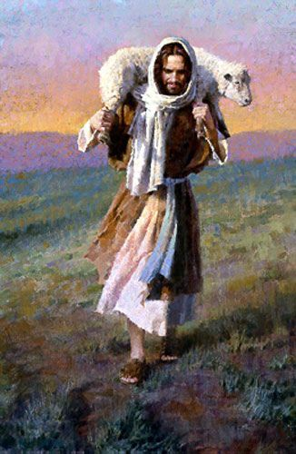 The Shepherd Carries His Sheep - I am the good shepherd. The good shepherd lays down his life for the sheep. The hireling, who is not the shepherd, whose own the sheep are not, seeth the wolf coming and leaves the sheep and flees; and the wolf snatches them and scatters. The hireling flees because he is a hireling and does not care for the sheep. I am the good shepherd; I know my sheep & they know me,..(John 10:10-16)