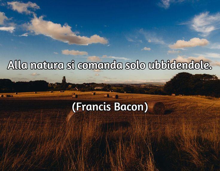 Sir Francis Bacon (Londra, 22 gennaio 1561 – Londra, 9 aprile 1626), è stato un filosofo, politico, giurista e saggista inglese vissuto alla corte inglese, sotto il regno di Elisabetta I Tudor e di Giacomo I Stuart.