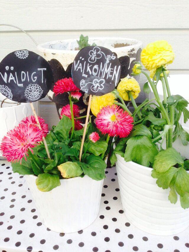Blomsterpinnar DIY