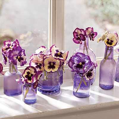 The pansies are smiling at youKitchens Windows, Shades Of Purple, Winter Flower, Colors, Purple Wedding, Pansies, Mason Jars, Purple Glasses, Purple Flower