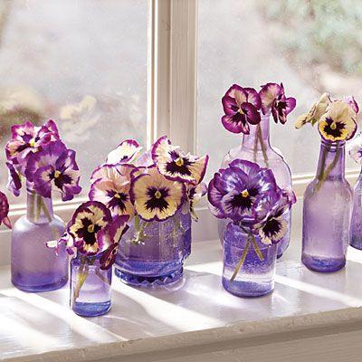 simple purple pansies.