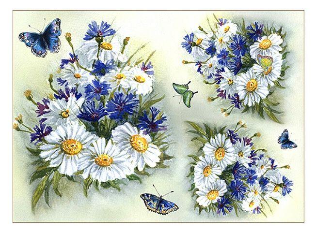 Васильки, ромашки, бабочки