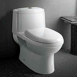Ariel Platinum TB222M Contemporary Toilet #Ariel #HomeRemodel #BathroomRemodel #BlondyBathHome #Toilets