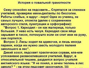 Екатерина — избранные фотографии на Яндекс.Фотках