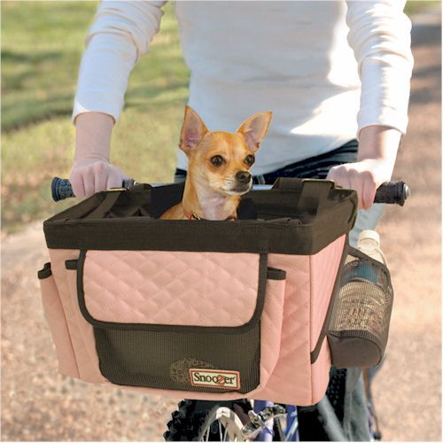 The chihuahua in this basket is adorable. I really want to get a basket like this for my Bll so he can ride with me on my bike