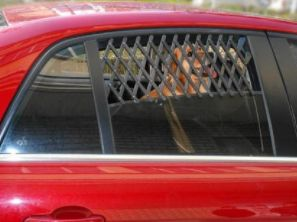 Only $20.78! Keep your dog or cat safe in the car, without worrying about them running out of air, or getting broken into. Expanding weave window keeper suits most cars and allows your pet to breathe with ease. Shop24seven365! Don't miss out on this great deal. Head to www.shop24seven365.com.au