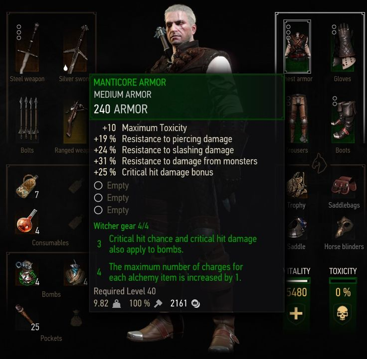 Major Set Bonus Lowered to 4 at The Witcher 3 Nexus - Mods and community