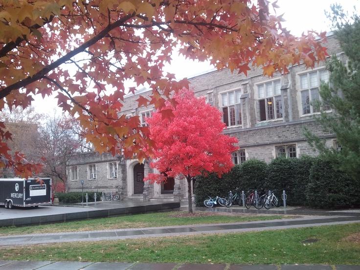 Dillon Gym, Princeton