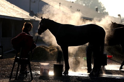 What a wonderful picture! 2013 Kentucky Derby field: Golden Soul he came in second --- great longshot too !!!!!!!