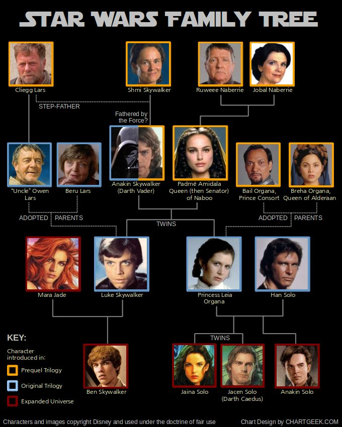 Skywalker/Solo Family Tree. (Missing Jacen Solo and Tenel Ka D'jo's daughter Allana Solo, and Jaina Solo's husband Jagged Fel.)