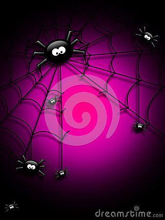 Venomous Spider Stock Photos, Images, & Pictures – (940 Images) - Page 12