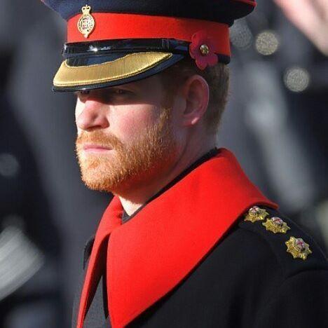 Prince Harry on November 12th 2016