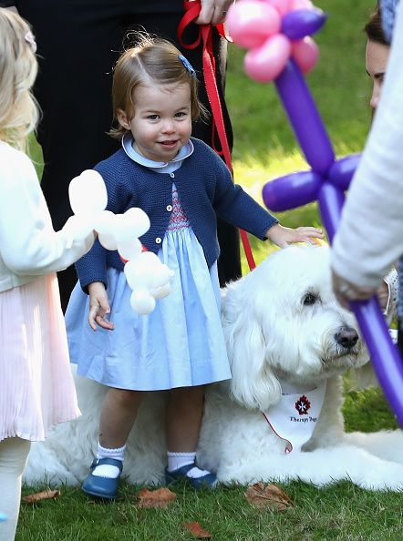 Princess Charlotte of Cambridge plays with a dog named Moose at a children's party for Military families during the Royal Tour of Canada on September 29, 2016 in Carcross, Canada.