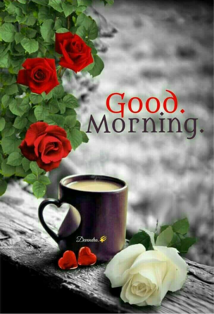 good morning bilder