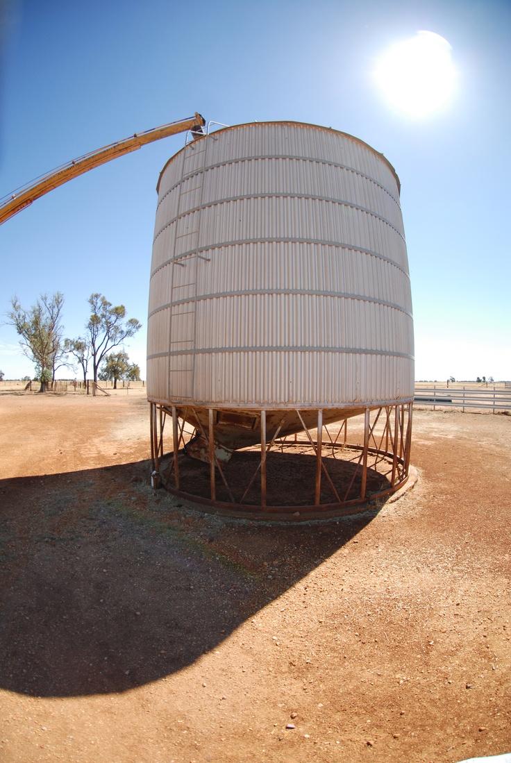 A fine day and a full silo - a farmers delight ...