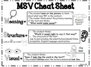 "MSV ""cheat Sheet""; use during running record to determine cause of error...freebie"