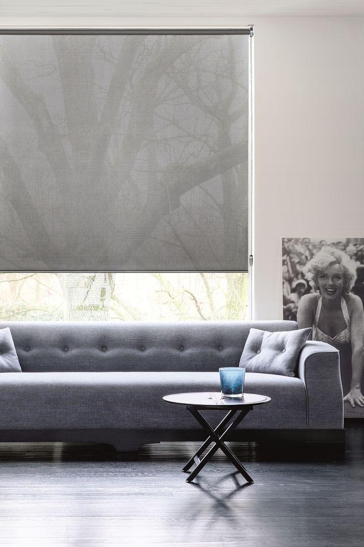 Copahome raamdecoratie rolgordijn transparant grijs / La décoration de fenêtre. Store enrouleurs transparent gris