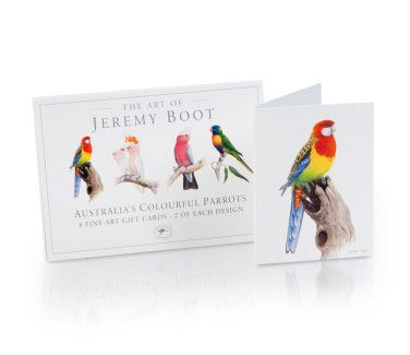 card stationery product photography adelaide