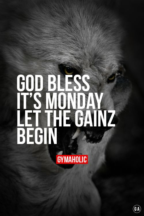 God Bless It Monday Brr! Let the gainz begin! http://www.gymaholic.co