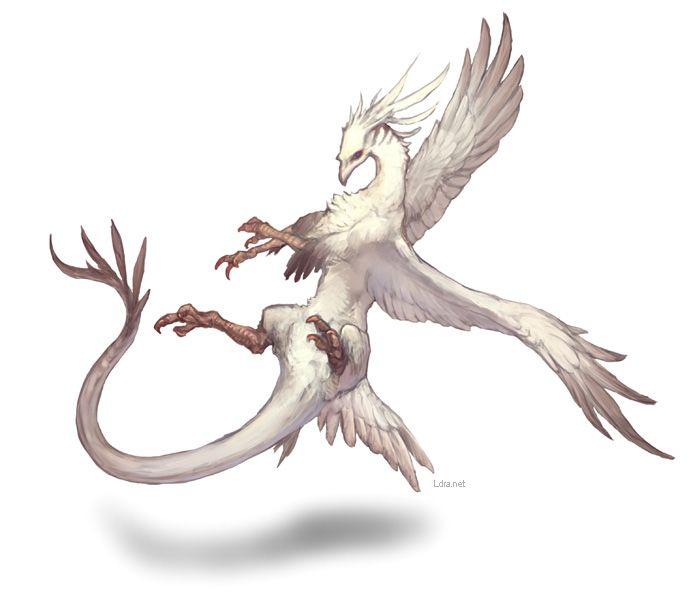 セイクリッドドラゴン