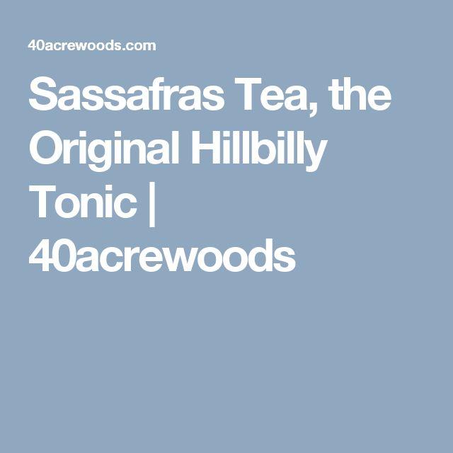Sassafras Tea, the Original Hillbilly Tonic | 40acrewoods