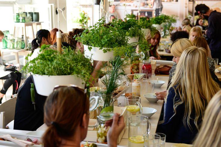Gästerna på pressvisningen av nya IKEA Katalogen 2016 plockade sina egna örter från BITTERGURKA amplar som hängde ovanför lunchbordet. Ett härligt sätt att odla i köket. #ikeakatalogen #ikeakatalogen2016 #provsmakaIKEA #ikeasverige #pressevent #kitchen #kök #växter #odling