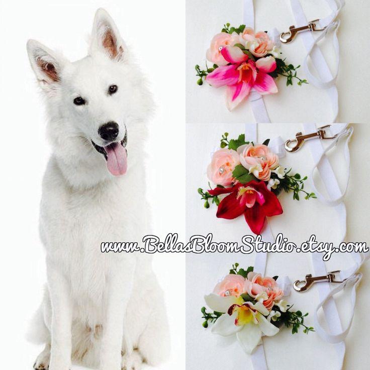 Dog Wedding Attire Dog Wedding leash Dog wedding collar Dog wedding outfits  White Dog Leash dog - Best 20+ Dog Wedding Outfits Ideas On Pinterest Dog Wedding, Boy