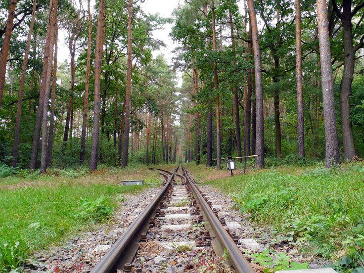 Wuhlheide Park in Berlin - 15 Alternative Things To Do in Berlin