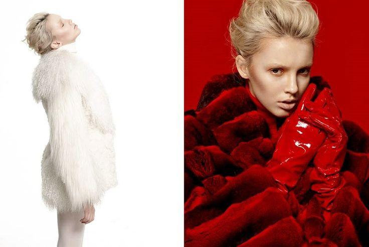 #white #red #chincilla #fox #fur #adamo #color #brand #fashion #trend #chic #elegance